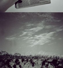 Totem 47 (Page), 2011, Selenium-toned Gelatin Silver Print triptych, edition of 5, 26 x 54 inches framed