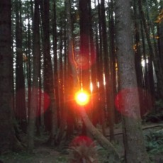 Sunset Optical, Ecola State Park, Oregon, 2012, Inkjet Print on Hahnemule Fine Art Paper, edition of 9